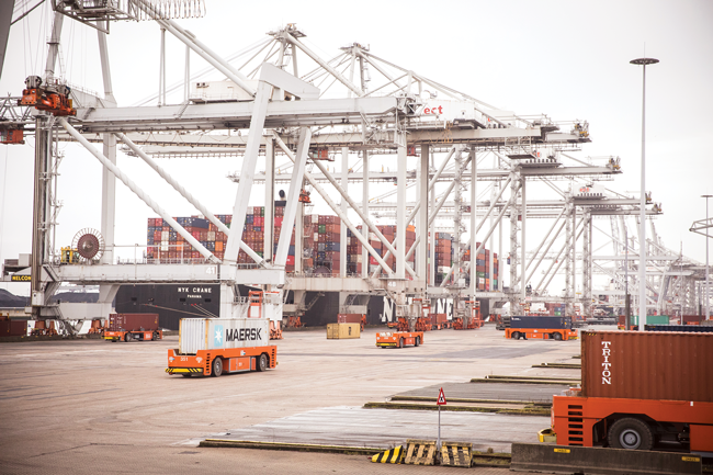Automated guided vehicles carry containers at the Port of Rotterdam.