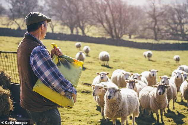 The new Agriculture Bill does not set any environmental or welfare rules for farm imports after Brexit at the end of the year