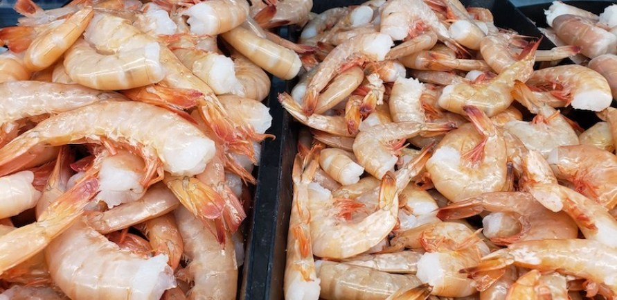 A display of raw pink shrimp with tails on, no heads.