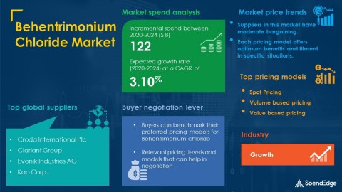 SpendEdge has announced the release of its Global Behentrimonium Chloride Market Procurement Intelligence Report (Graphic: Business Wire)