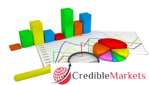 Information Technology - Credible Markets