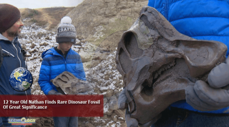 12 Year Old Nathan Finds Rare Dinosaur Fossil Of Great Significance