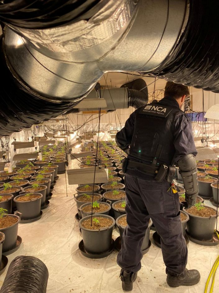In total three men were charged with production of a class B drug (Picture: SWNS)
