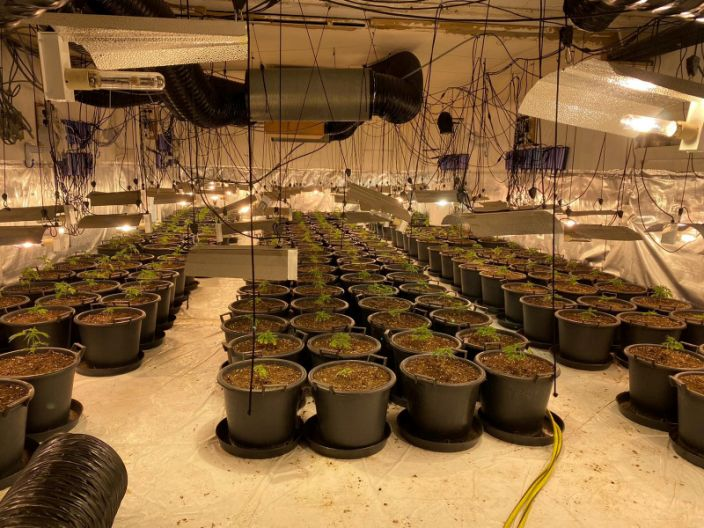 A cannabis factory worth £1 million was found at the former nightspot in Coventry (Picture: SWNS)
