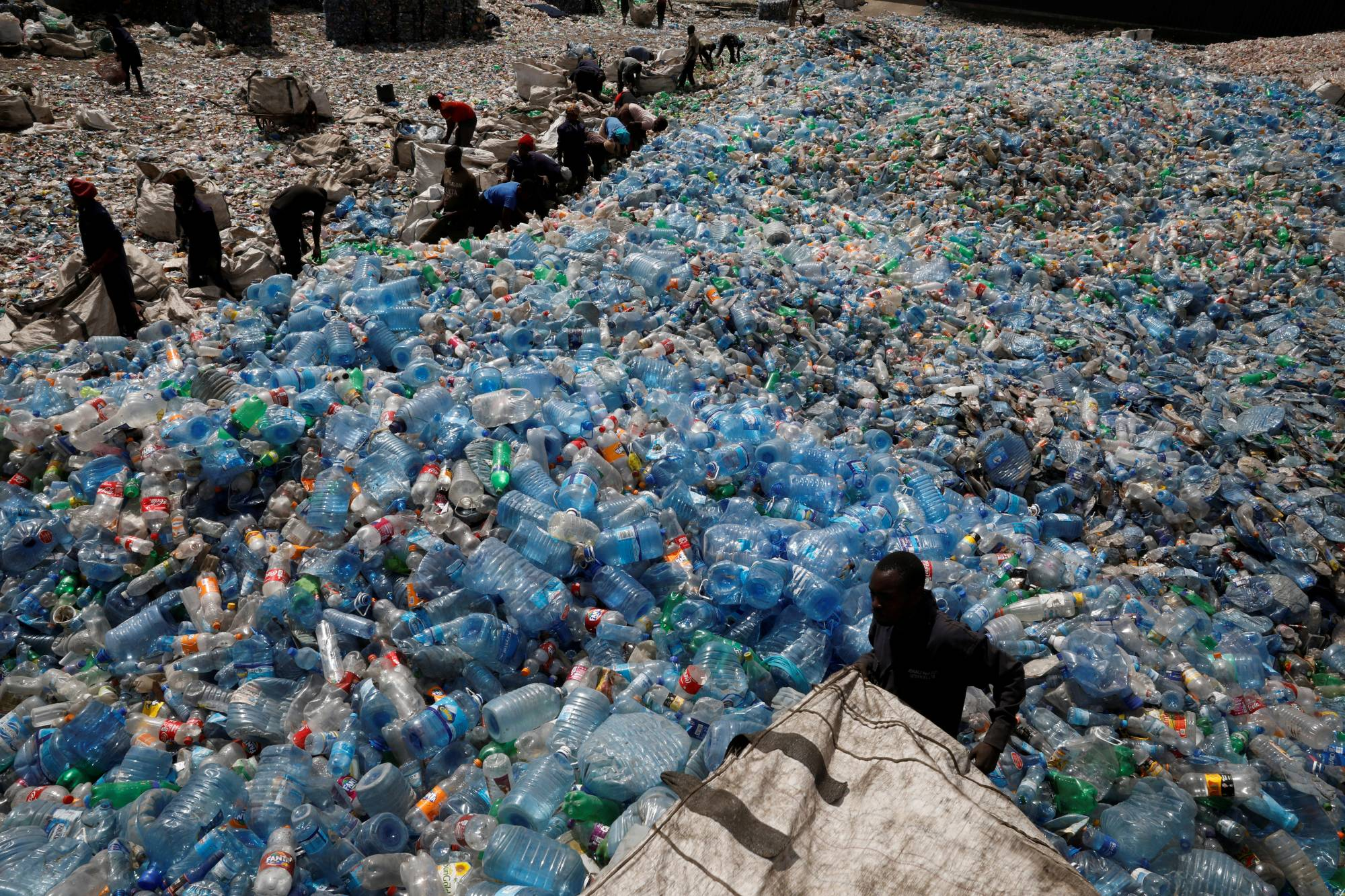 Employees sort plastic bottles at the Weeco plastic recycling factory in the Athi River industrial zone near Nairobi, Kenya in 2019.   REUTERS