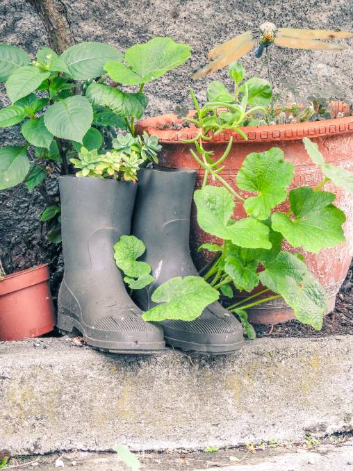 NEW HOME: Give your family's pre-loved gumboots a new lease on life.