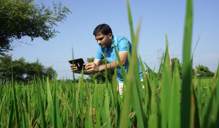 Can This Agritech Startup's Cross-Border Blockchain Marketplace Fix India's Farm Income Drought?