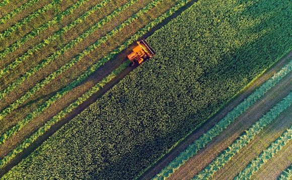 Food production is one of the biggest drivers of habitat loss worldwide