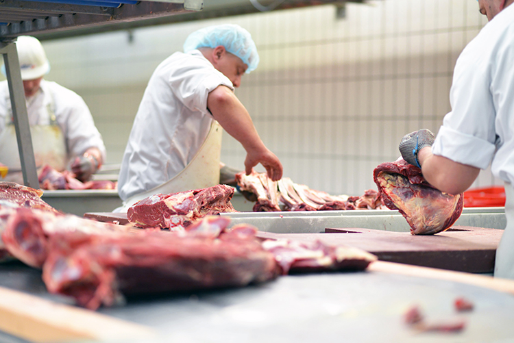meat processing workers