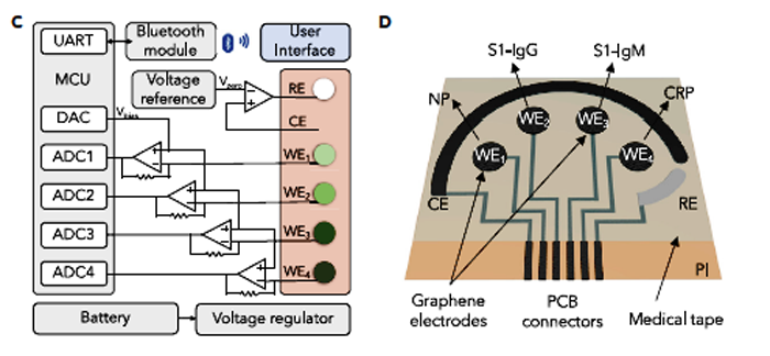 3. On the left is a block diagram of the SARS-CoV-2 RapidPlex platform shows UART, MCU, DAC, ADC, and other key functional blocks. On the right is a schematic illustration of the graphene sensor-array layout.