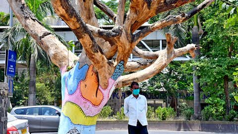 A man protects himself from Sun due to high temperature under a dead tree at Kharghar in Navi Mumbai.