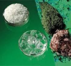 Super Absorbent Polymer (SAP) Market