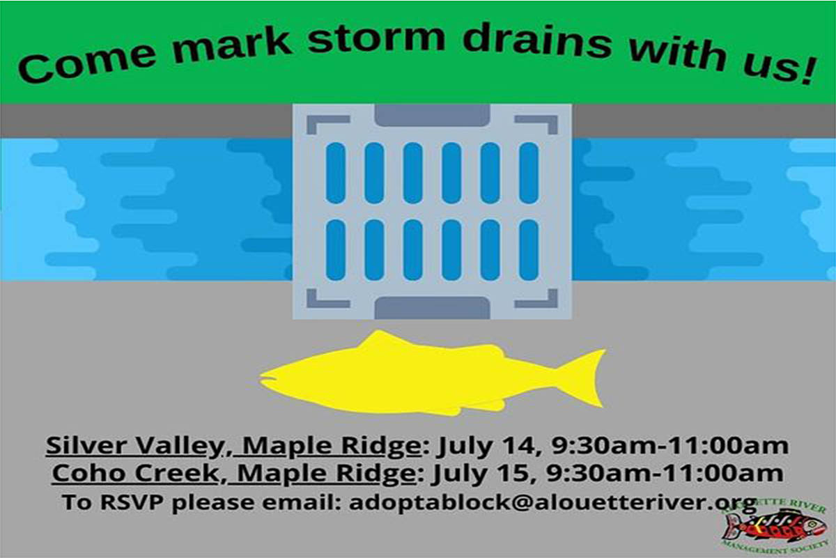 ARMS is asking for volunteers to help protect storm drains from toxic material.